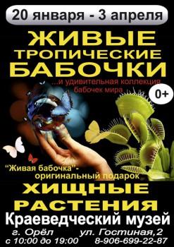 Выставка живых тропических бабочек и хищных растений
